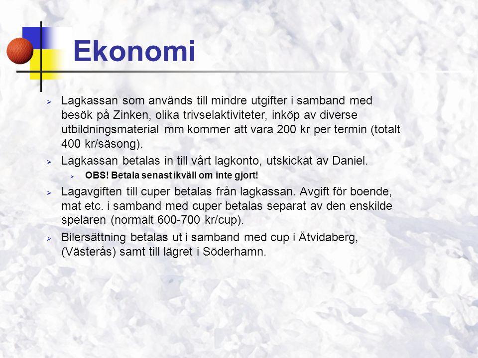  Lagkassan som används till mindre utgifter i samband med besök på Zinken, olika trivselaktiviteter, inköp av diverse utbildningsmaterial mm kommer att vara 200 kr per termin (totalt 400 kr/säsong).
