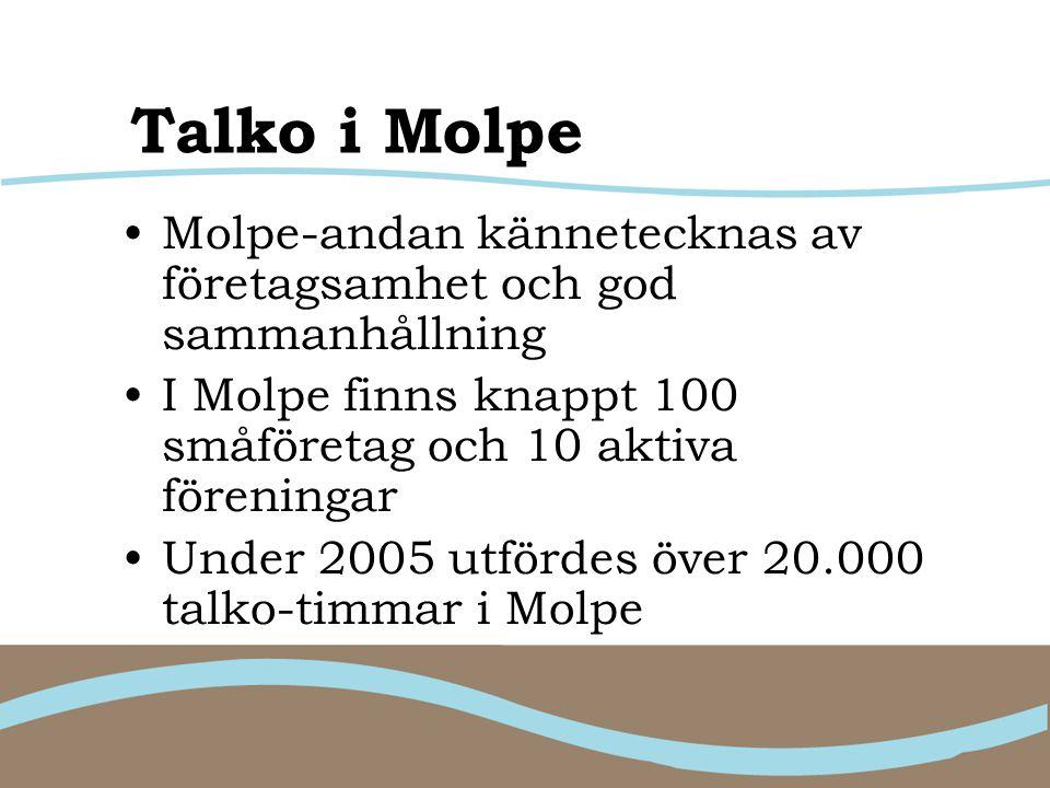 Talko i Molpe Molpe-andan kännetecknas av företagsamhet och god sammanhållning I Molpe finns knappt 100 småföretag och 10 aktiva föreningar Under 2005 utfördes över 20.000 talko-timmar i Molpe
