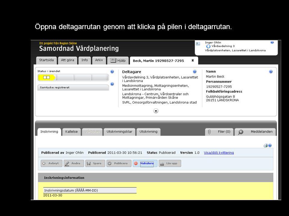 Öppna deltagarrutan genom att klicka på pilen i deltagarrutan.