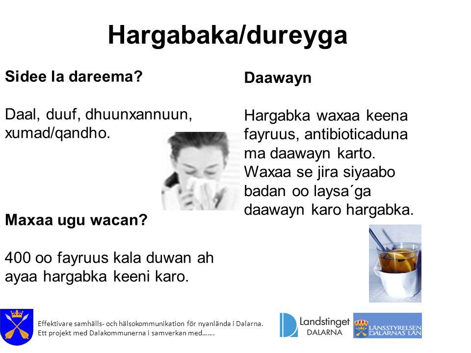 Effektivare samhälls- och hälsokommunikation för nyanlända i Dalarna. Ett projekt med Dalakommunerna i samverkan med……. Hargabaka/dureyga Daawayn Harg