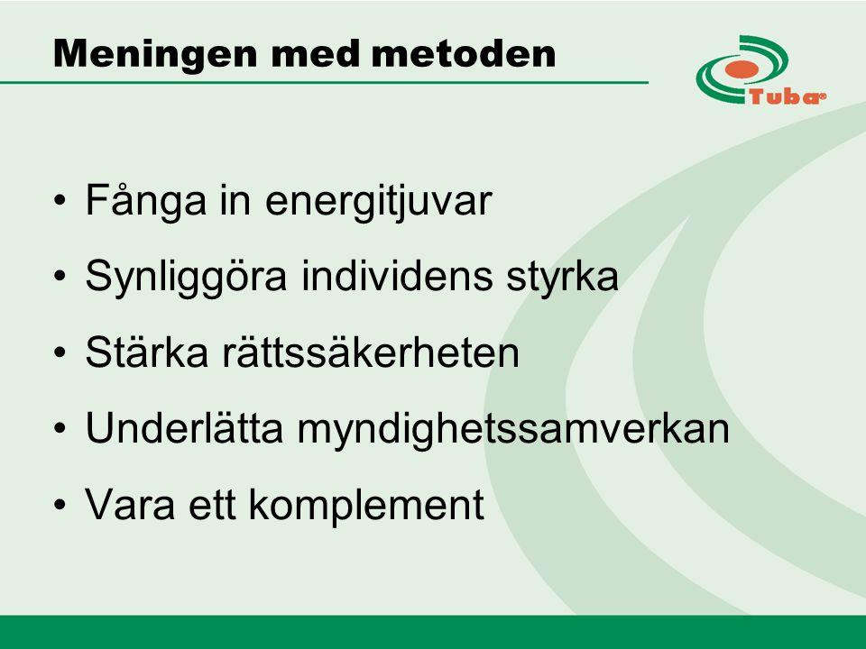 Meningen med metoden Fånga in energitjuvar Synliggöra individens styrka Stärka rättssäkerheten Underlätta myndighetssamverkan Vara ett komplement