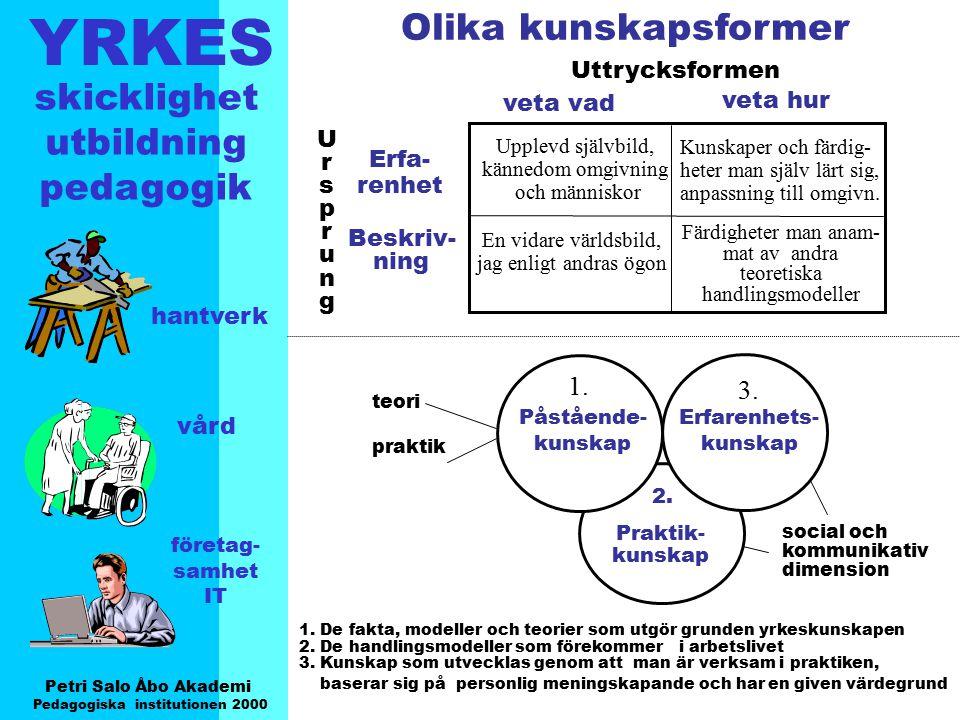 YRKES Petri Salo Åbo Akademi Pedagogiska institutionen 2000 skicklighet utbildning pedagogik hantverk vård företag- samhet IT Erfa- renhet Beskriv- ni