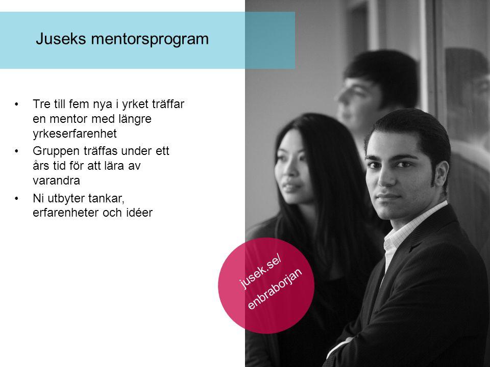 Juseks mentorsprogram Tre till fem nya i yrket träffar en mentor med längre yrkeserfarenhet Gruppen träffas under ett års tid för att lära av varandra