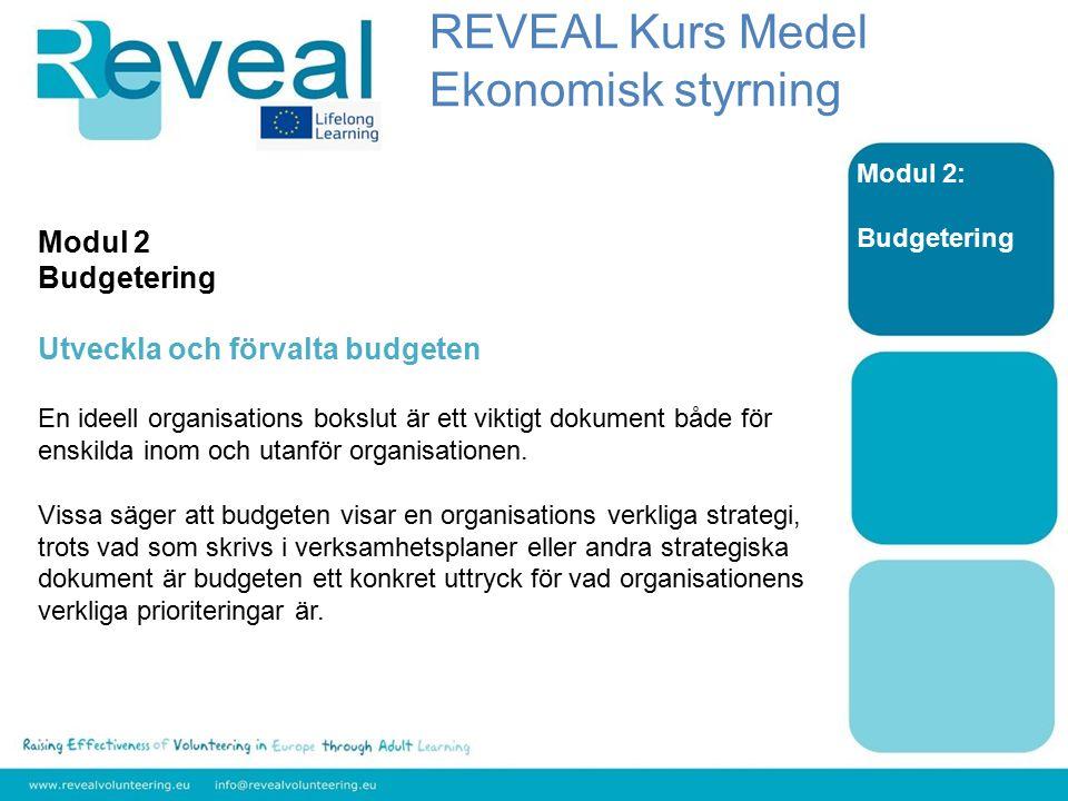 Modul 2: Budgetering Modul 2 Budgetering Utveckla och förvalta budgeten En ideell organisations bokslut är ett viktigt dokument både för enskilda inom