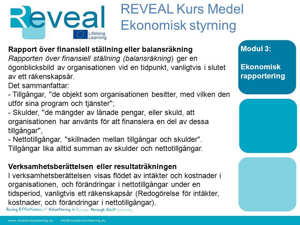 Modul 3: Ekonomisk rapportering Rapport över finansiell ställning eller balansräkning Rapporten över finansiell ställning (balansräkning) ger en ögonb