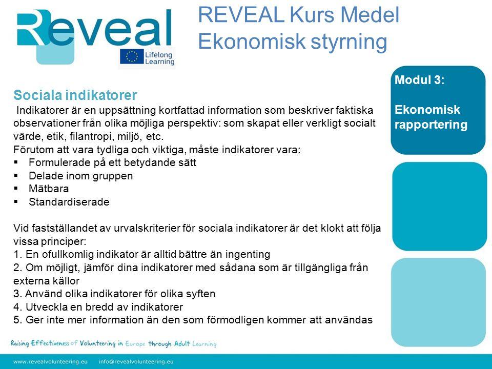 Modul 3: Ekonomisk rapportering Sociala indikatorer Indikatorer är en uppsättning kortfattad information som beskriver faktiska observationer från olika möjliga perspektiv: som skapat eller verkligt socialt värde, etik, filantropi, miljö, etc.