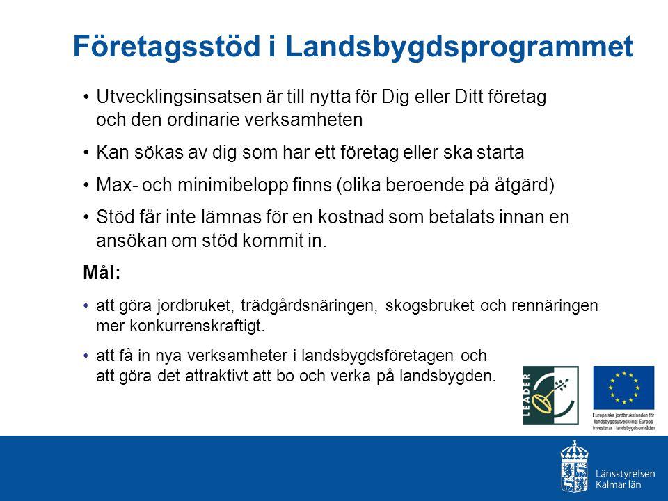 Företagsstöd i Landsbygdsprogrammet Utvecklingsinsatsen är till nytta för Dig eller Ditt företag och den ordinarie verksamheten Kan sökas av dig som h