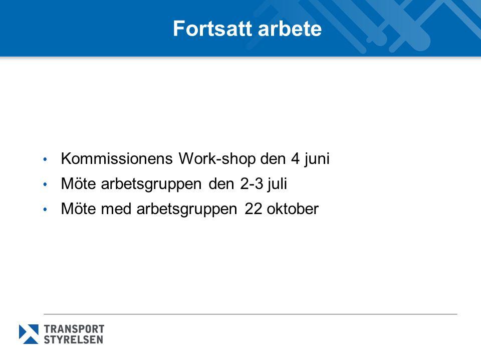 Fortsatt arbete Kommissionens Work-shop den 4 juni Möte arbetsgruppen den 2-3 juli Möte med arbetsgruppen 22 oktober