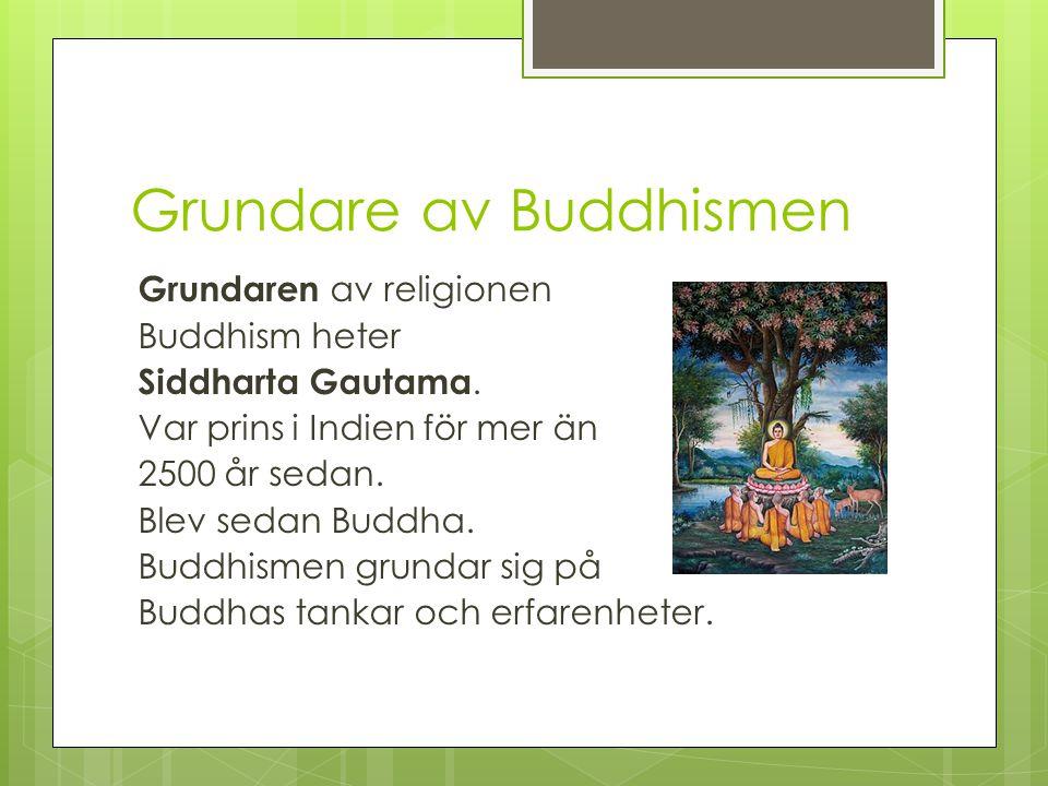 Vad betyder Buddha. Ordet Buddha betyder: Den upplyste.