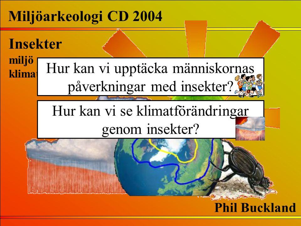 Hur kan vi se klimatförändringar genom insekter? Miljöarkeologi CD 2004 Insekter miljö klimat Phil Buckland Hur kan vi upptäcka människornas påverknin