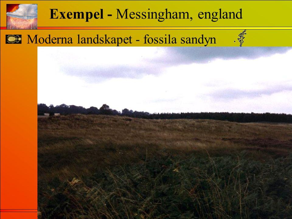 Moderna landskapet - fossila sandyn Exempel - Messingham, england