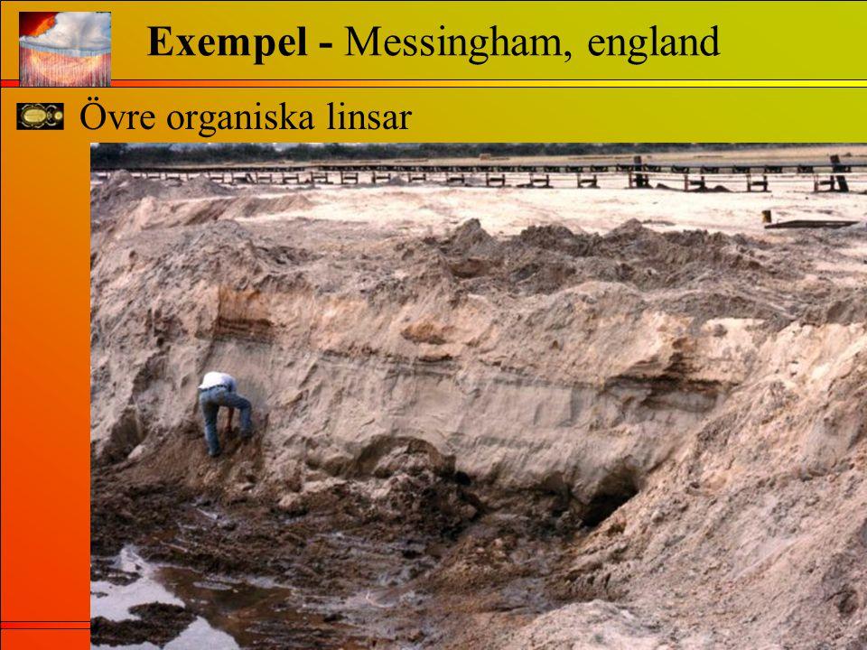 Övre organiska linsar Exempel - Messingham, england