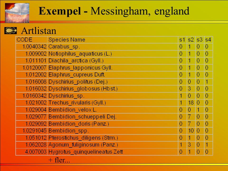 Artlistan Exempel - Messingham, england + fler...
