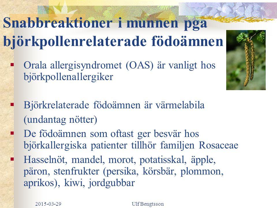 Snabbreaktioner i munnen pga björkpollenrelaterade födoämnen  Orala allergisyndromet (OAS) är vanligt hos björkpollenallergiker  Björkrelaterade födoämnen är värmelabila (undantag nötter)  De födoämnen som oftast ger besvär hos björkallergiska patienter tillhör familjen Rosaceae  Hasselnöt, mandel, morot, potatisskal, äpple, päron, stenfrukter (persika, körsbär, plommon, aprikos), kiwi, jordgubbar 2015-03-29Ulf Bengtsson
