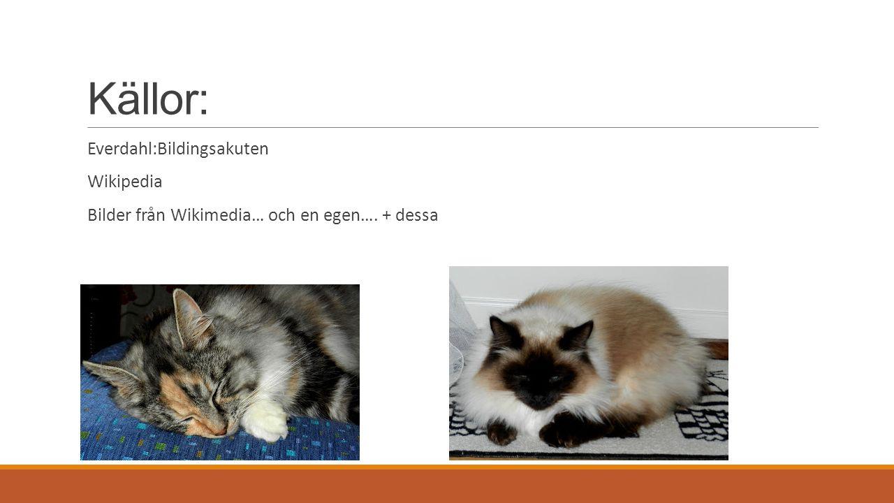 Källor: Everdahl:Bildingsakuten Wikipedia Bilder från Wikimedia… och en egen…. + dessa