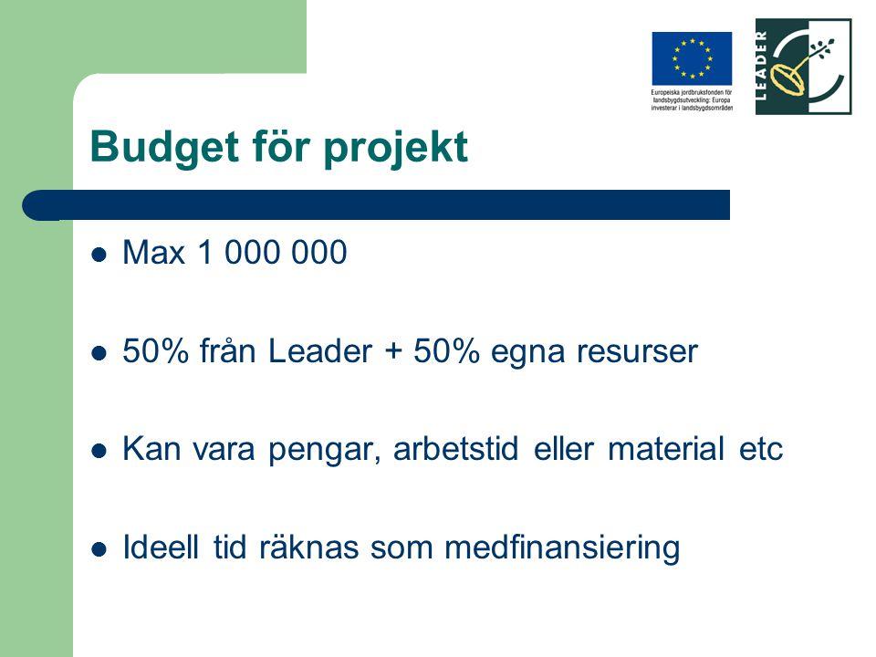 Budget för projekt Max 1 000 000 50% från Leader + 50% egna resurser Kan vara pengar, arbetstid eller material etc Ideell tid räknas som medfinansieri