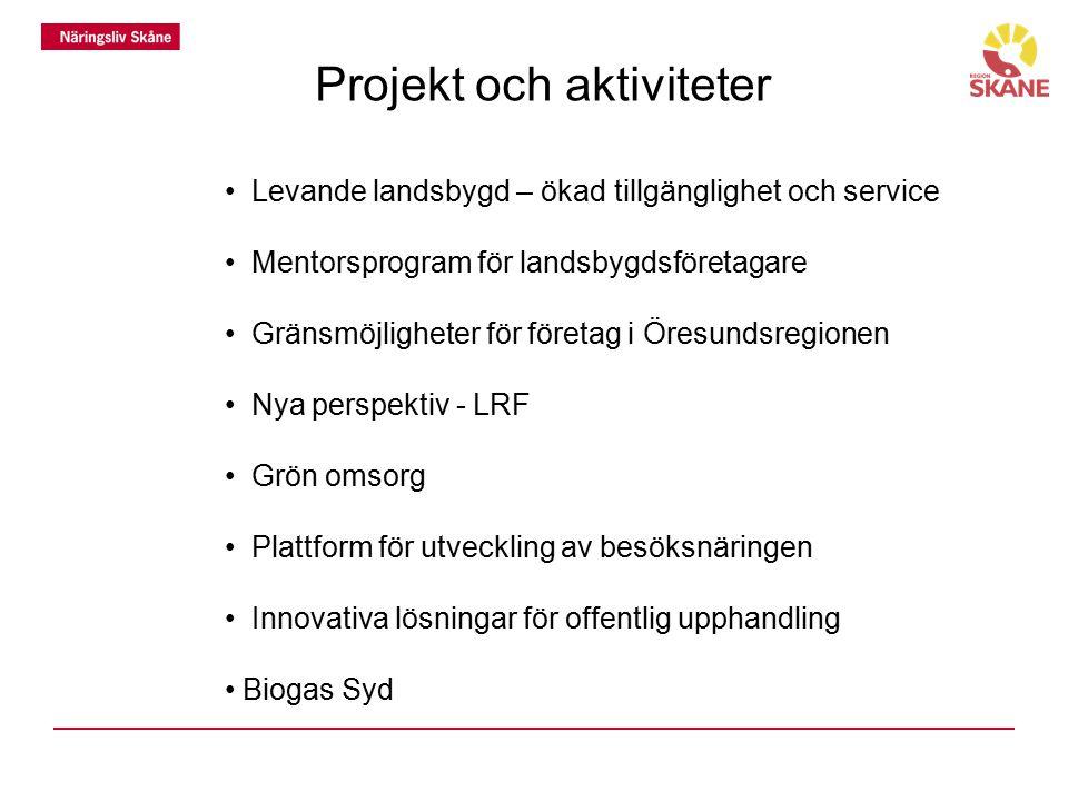 Projekt och aktiviteter Levande landsbygd – ökad tillgänglighet och service Mentorsprogram för landsbygdsföretagare Gränsmöjligheter för företag i Öre