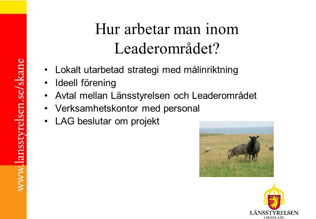 Hur arbetar man inom Leaderområdet.