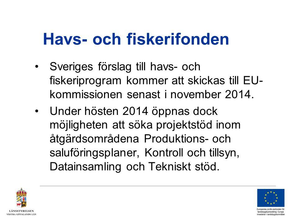Havs- och fiskerifonden Sveriges förslag till havs- och fiskeriprogram kommer att skickas till EU- kommissionen senast i november 2014.