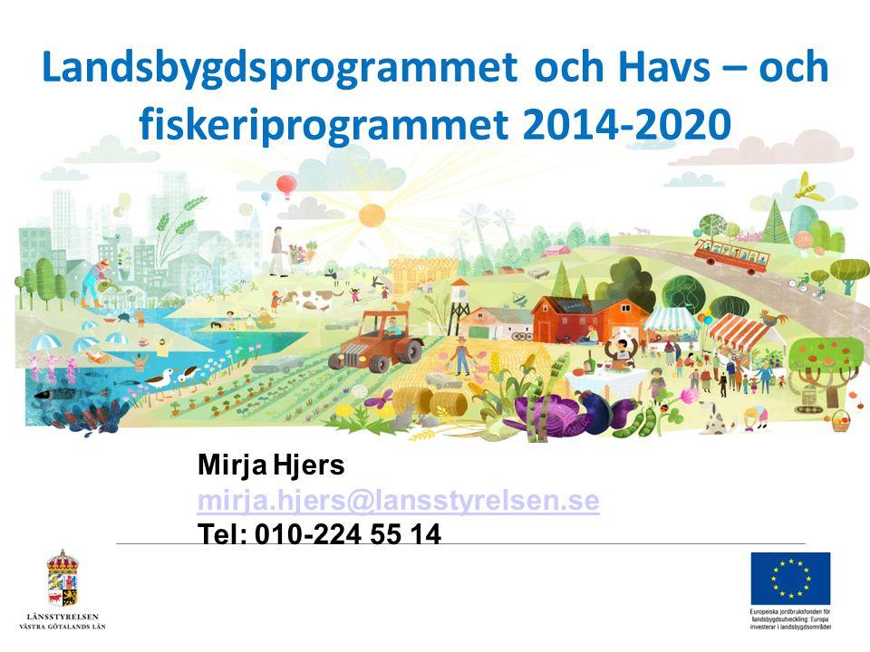 Landsbygdsprogrammet och Havs – och fiskeriprogrammet 2014-2020 Mirja Hjers mirja.hjers@lansstyrelsen.se mirja.hjers@lansstyrelsen.se Tel: 010-224 55 14