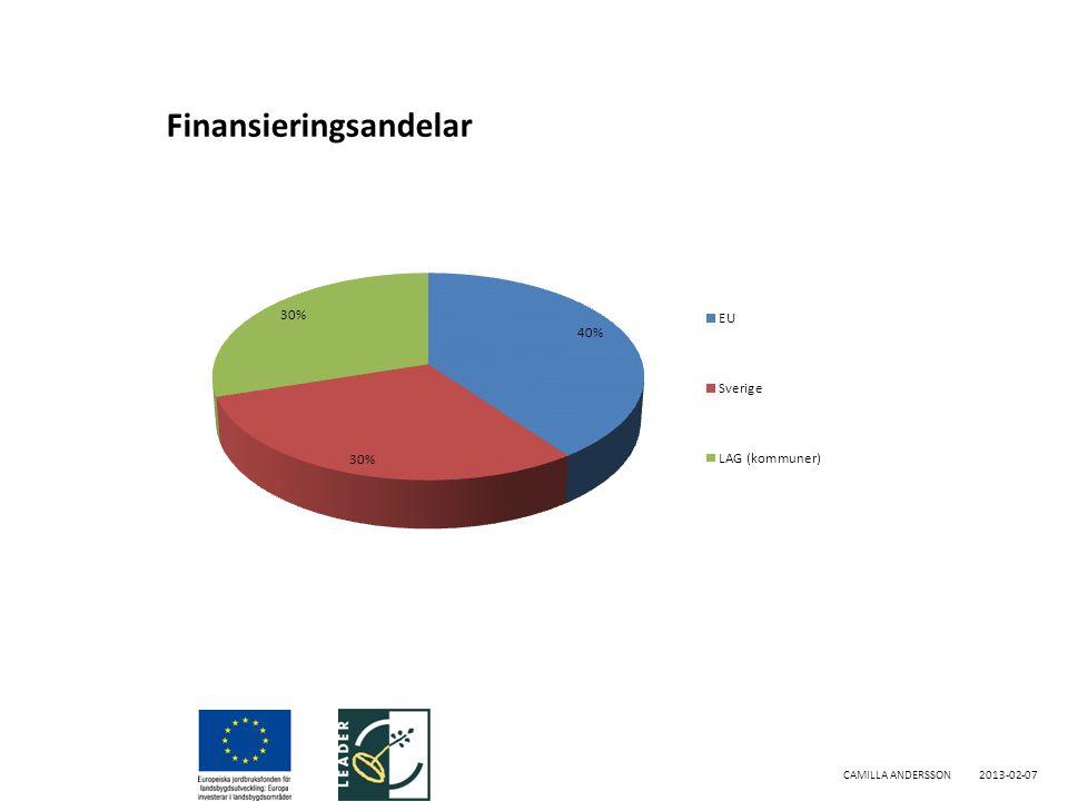 Finansieringsandelar CAMILLA ANDERSSON2013-02-07