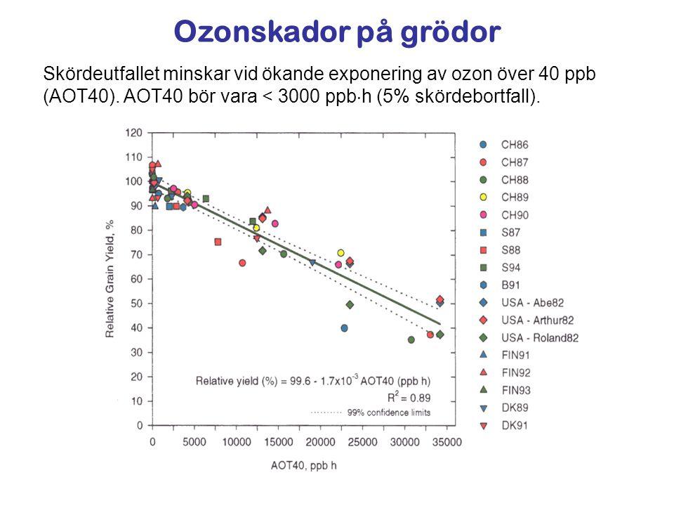 Ozonskador på grödor Skördeutfallet minskar vid ökande exponering av ozon över 40 ppb (AOT40). AOT40 bör vara < 3000 ppb  h (5% skördebortfall).