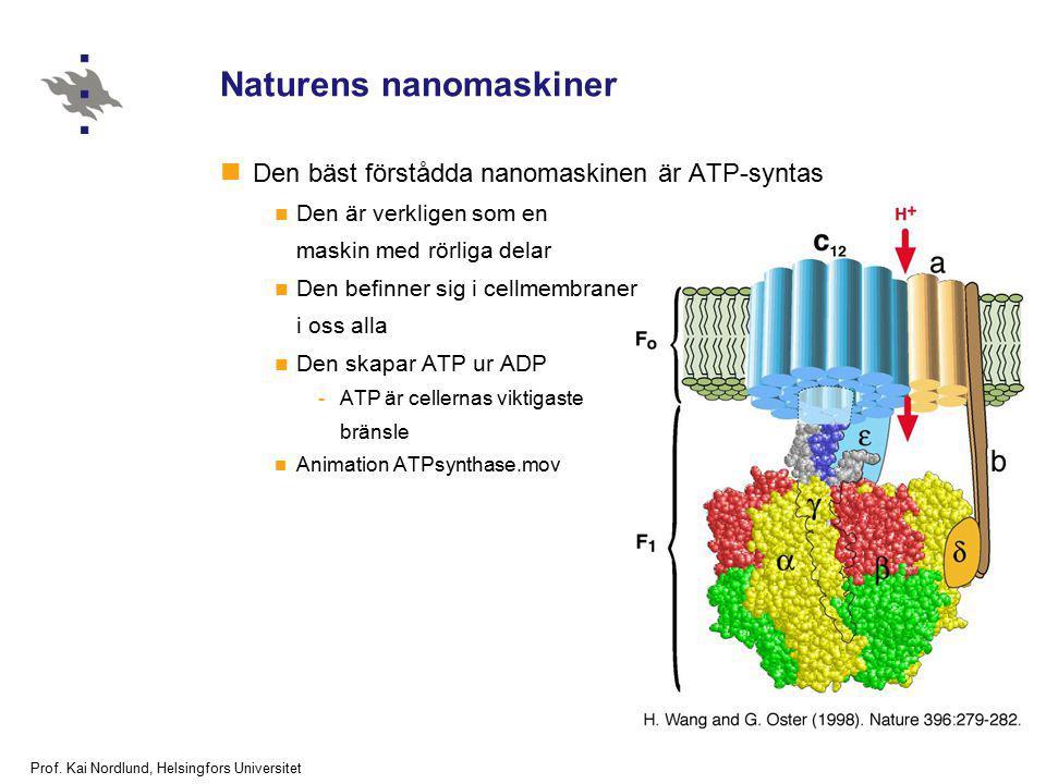 Prof. Kai Nordlund, Helsingfors Universitet Naturens nanomaskiner Den bäst förstådda nanomaskinen är ATP-syntas Den är verkligen som en maskin med rör