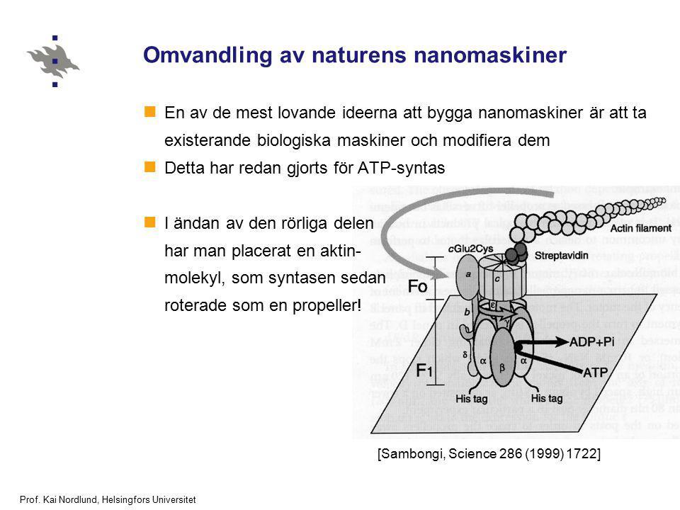 Prof. Kai Nordlund, Helsingfors Universitet Omvandling av naturens nanomaskiner En av de mest lovande ideerna att bygga nanomaskiner är att ta exister