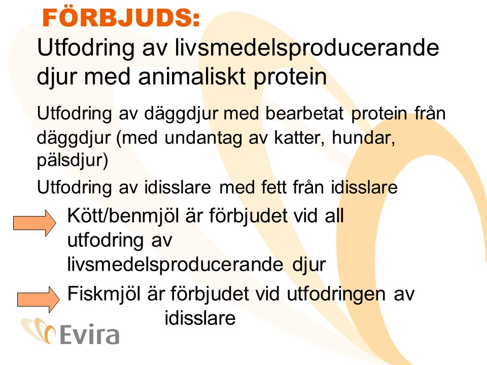 FÖRBJUDS: Utfodring av livsmedelsproducerande djur med animaliskt protein Utfodring av däggdjur med bearbetat protein från däggdjur (med undantag av katter, hundar, pälsdjur) Utfodring av idisslare med fett från idisslare Kött/benmjöl är förbjudet vid all utfodring av livsmedelsproducerande djur Fiskmjöl är förbjudet vid utfodringen av idisslare