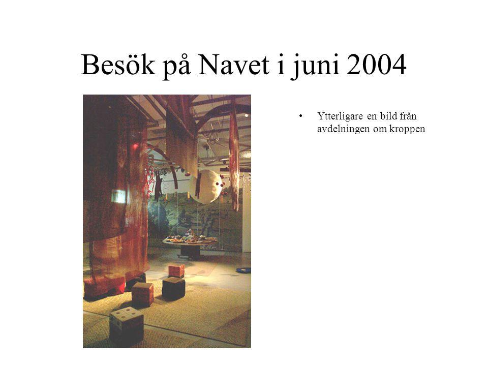 Besök på Navet i juni 2004 Ytterligare en bild från avdelningen om kroppen