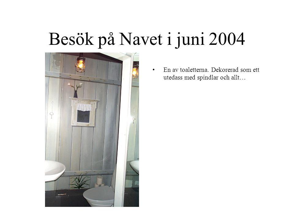 Besök på Navet i juni 2004 En av toaletterna. Dekorerad som ett utedass med spindlar och allt…