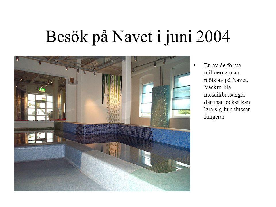 Besök på Navet i juni 2004 En av de första miljöerna man möts av på Navet.