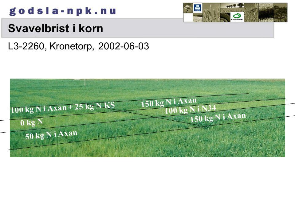 Svavelbrist i korn 0 kg N 50 kg N i Axan 100 kg N i Axan + 25 kg N KS 150 kg N i Axan 100 kg N i N34 L3-2260, Kronetorp, 2002-06-03