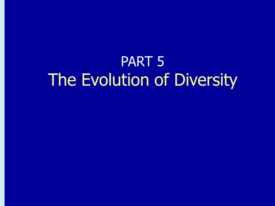 Chapter 26: Bacteria and Archaea: the Prokaryotic Domains PART 5 The Evolution of Diversity