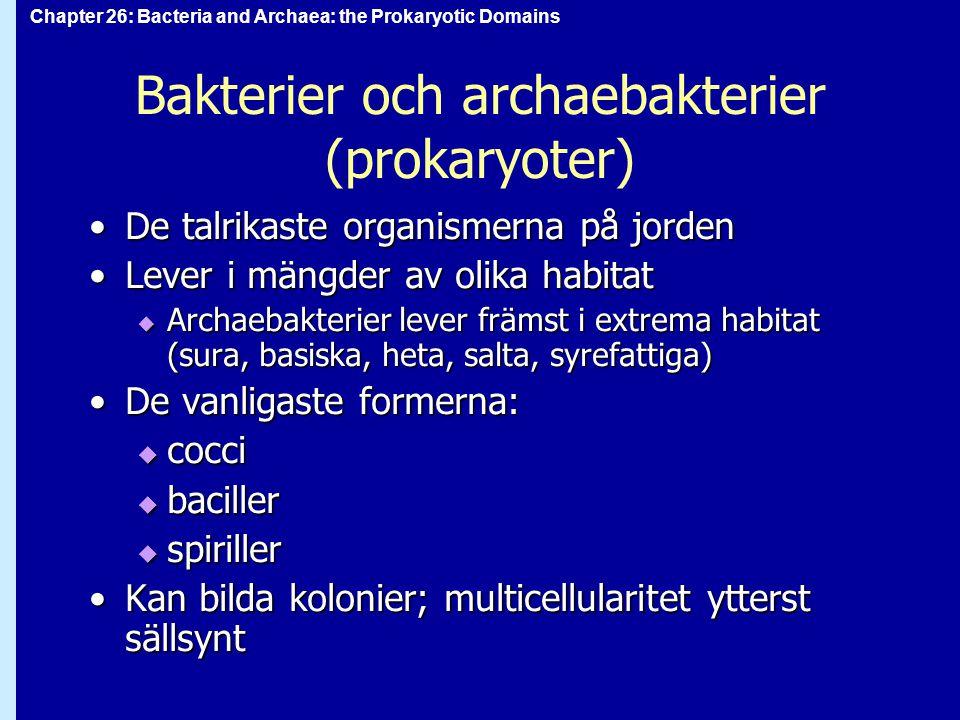 Chapter 26: Bacteria and Archaea: the Prokaryotic Domains Bakterier och archaebakterier (prokaryoter) De talrikaste organismerna på jordenDe talrikast