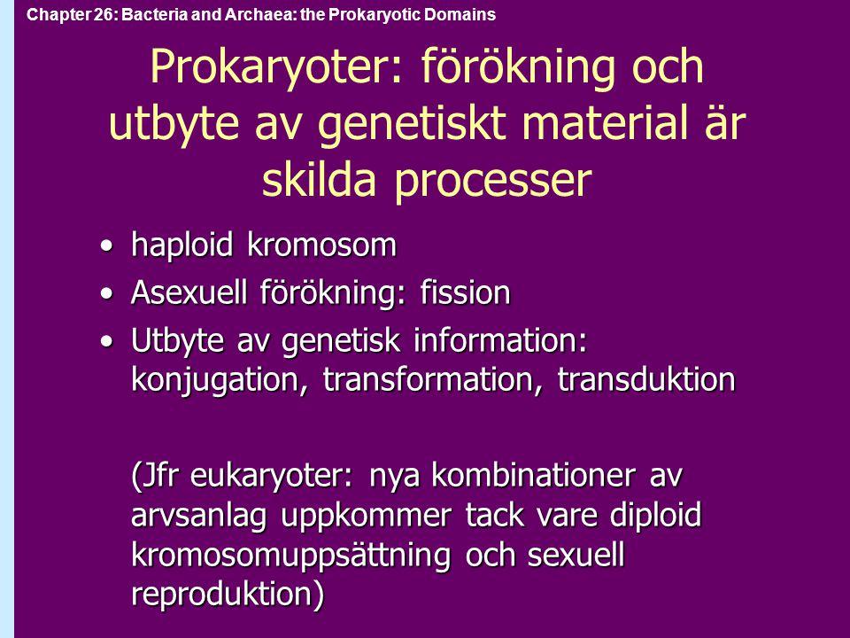 Prokaryoter: förökning och utbyte av genetiskt material är skilda processer haploid kromosomhaploid kromosom Asexuell förökning: fissionAsexuell förök
