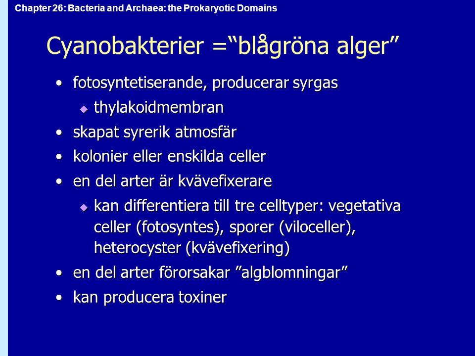 "Chapter 26: Bacteria and Archaea: the Prokaryotic Domains Cyanobakterier =""blågröna alger"" fotosyntetiserande, producerar syrgasfotosyntetiserande, pr"
