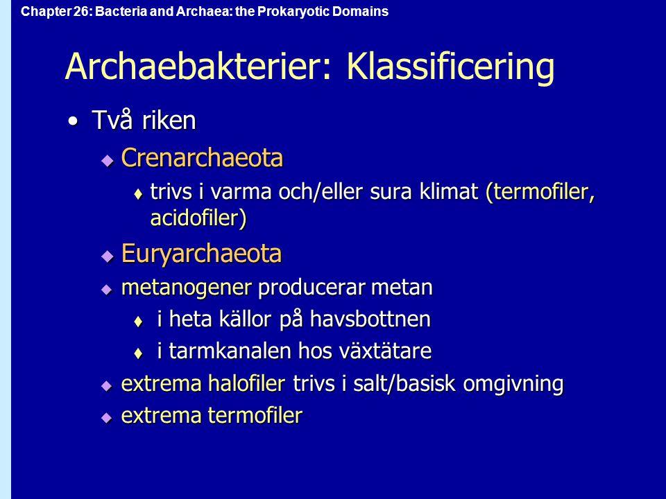 Chapter 26: Bacteria and Archaea: the Prokaryotic Domains Archaebakterier: Klassificering Två rikenTvå riken  Crenarchaeota  trivs i varma och/eller