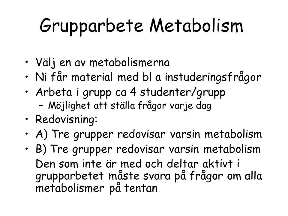 Grupparbete Metabolism Välj en av metabolismerna Ni får material med bl a instuderingsfrågor Arbeta i grupp ca 4 studenter/grupp –Möjlighet att ställa