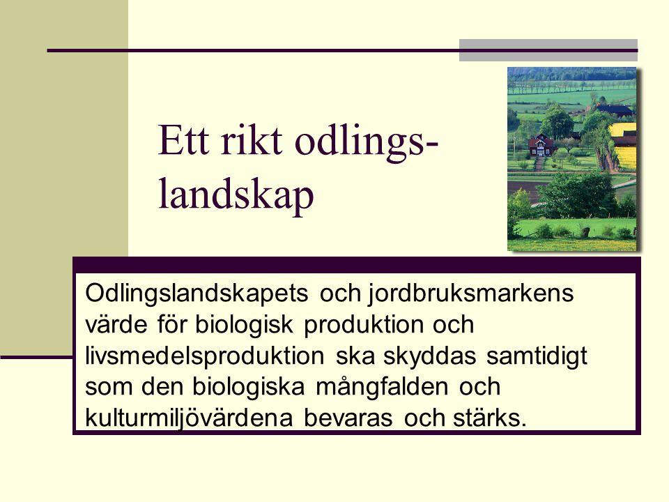 Ett rikt odlings- landskap Odlingslandskapets och jordbruksmarkens värde för biologisk produktion och livsmedelsproduktion ska skyddas samtidigt som d