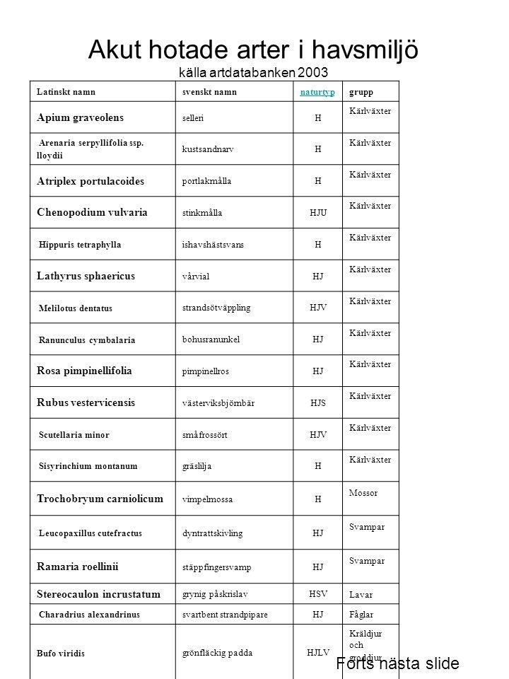 Akut hotade arter i havsmiljö källa artdatabanken 2003 Latinskt namn svenskt namnnaturtypgrupp Apium graveolens selleriH Kärlväxter Arenaria serpyllif