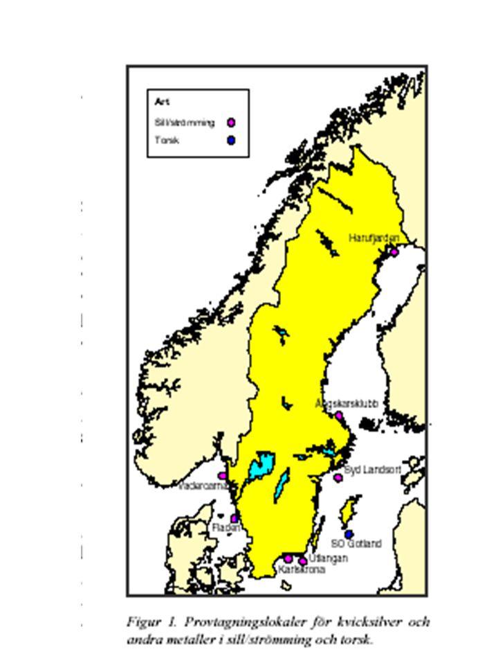 Okända miljögifter eller effekter av: Mystisk fågeldöd i Östersjön fortsätter Mystisk fågeldöd i Östersjön fortsätter Under de senaste åren har en mystisk fågeldöd härjat på den svenska Östersjökusten.
