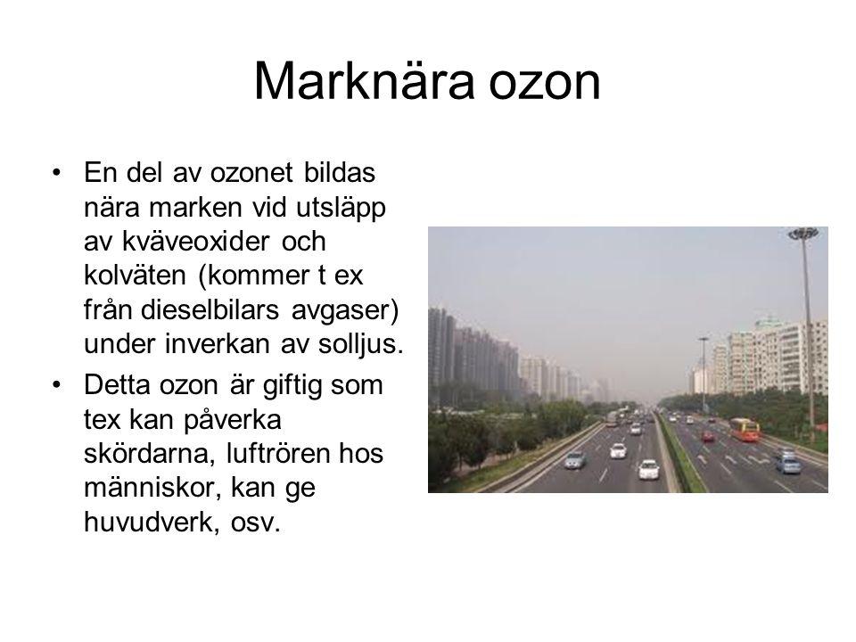 Marknära ozon En del av ozonet bildas nära marken vid utsläpp av kväveoxider och kolväten (kommer t ex från dieselbilars avgaser) under inverkan av so