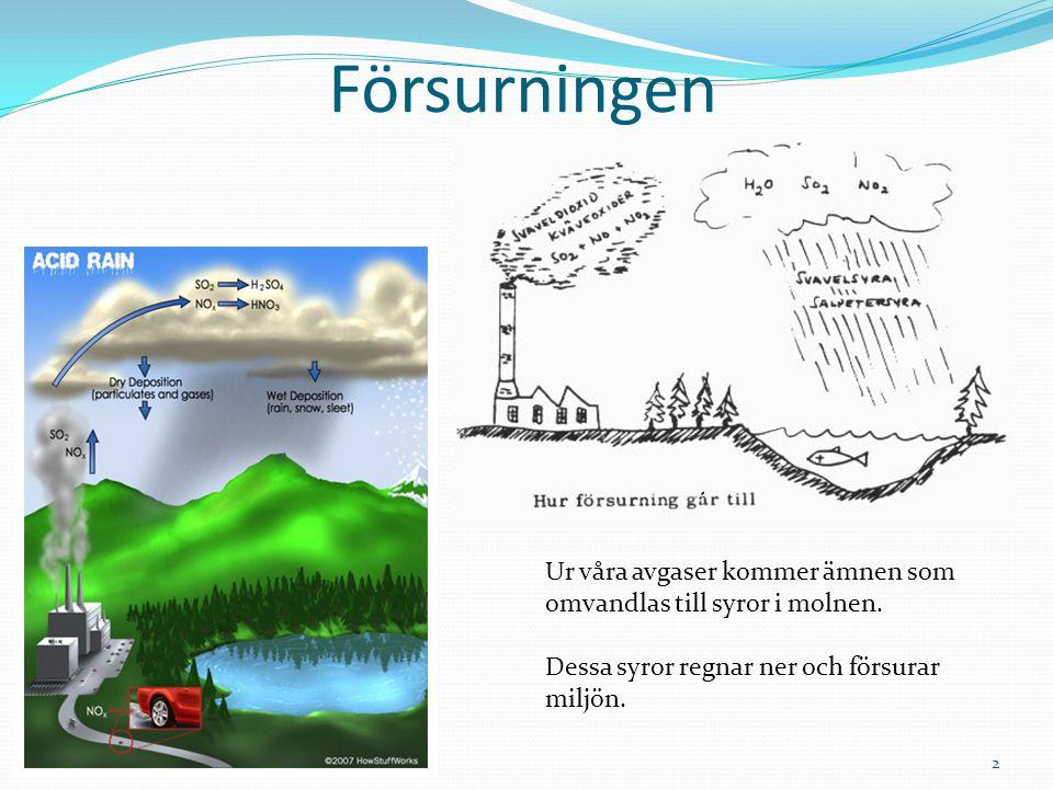 Försurningen Ur våra avgaser kommer ämnen som omvandlas till syror i molnen. Dessa syror regnar ner och försurar miljön. 2