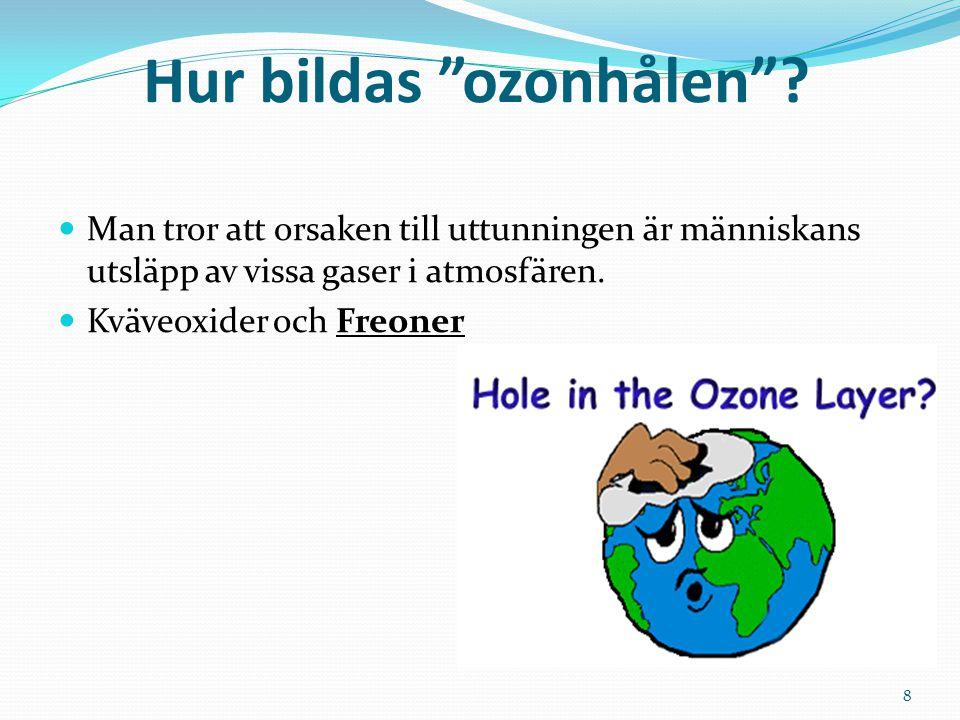 """Hur bildas """"ozonhålen""""? Man tror att orsaken till uttunningen är människans utsläpp av vissa gaser i atmosfären. Kväveoxider och Freoner 8"""