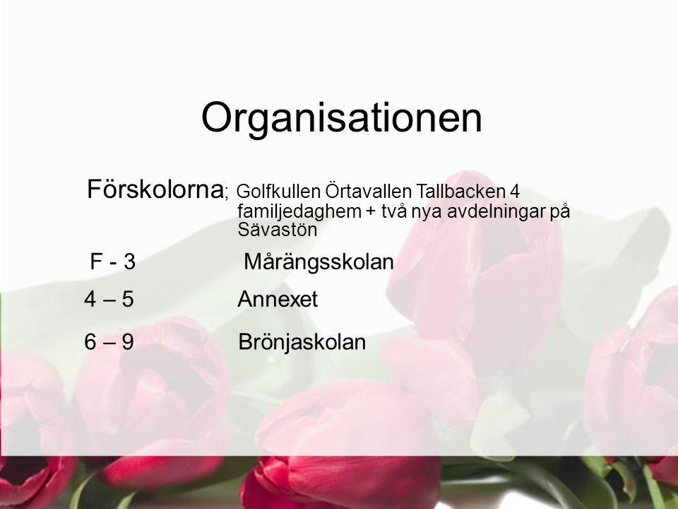 Organisationen Förskolorna ; Golfkullen Örtavallen Tallbacken 4 familjedaghem + två nya avdelningar på Sävastön F - 3 Mårängsskolan 4 – 5 Annexet 6 – 9 Brönjaskolan