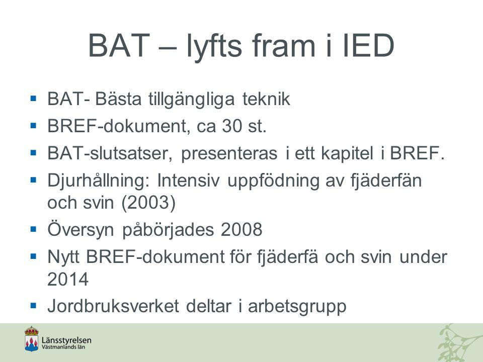BAT – lyfts fram i IED  BAT- Bästa tillgängliga teknik  BREF-dokument, ca 30 st.  BAT-slutsatser, presenteras i ett kapitel i BREF.  Djurhållning: