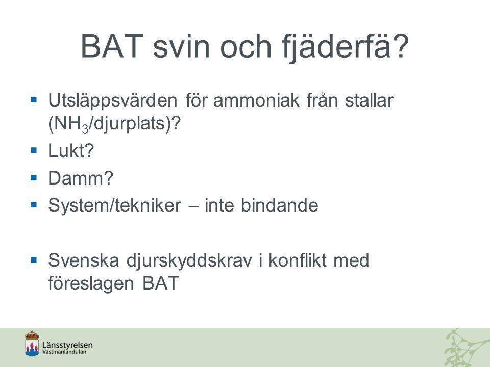 BAT svin och fjäderfä. Utsläppsvärden för ammoniak från stallar (NH 3 /djurplats).