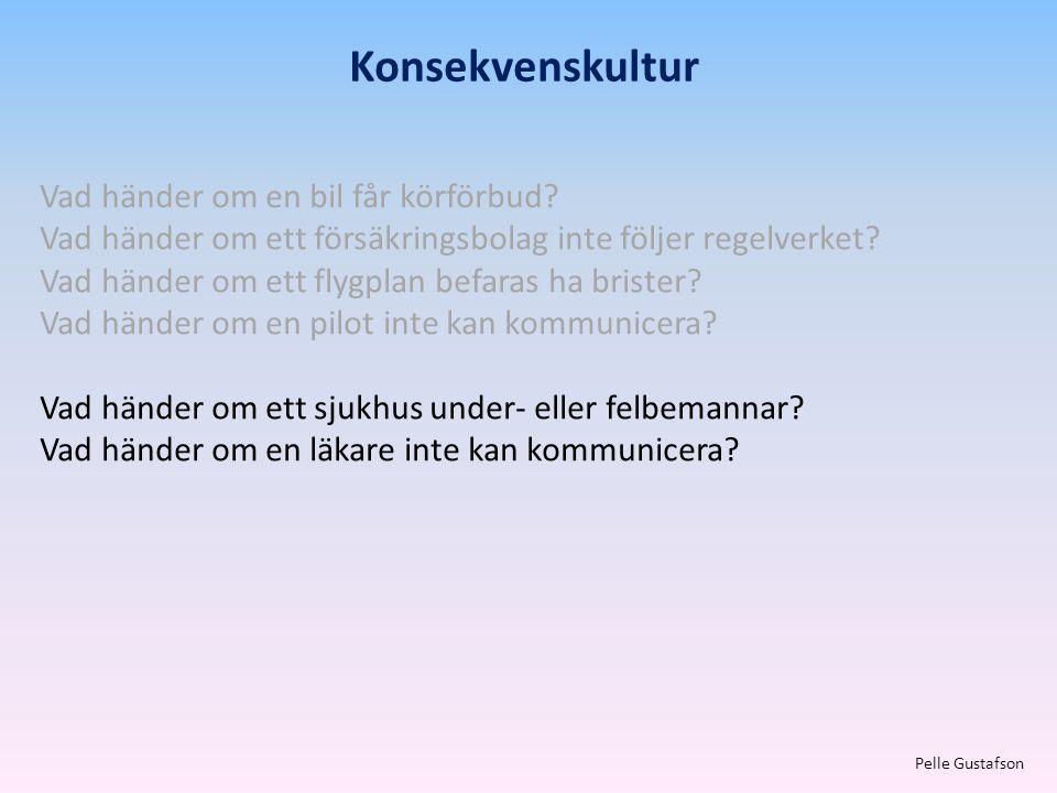 Konsekvenskultur Pelle Gustafson Vad händer om en bil får körförbud? Vad händer om ett försäkringsbolag inte följer regelverket? Vad händer om ett fly