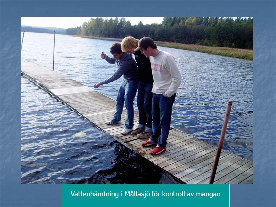Vattenhämtning i Mållasjö för kontroll av mangan